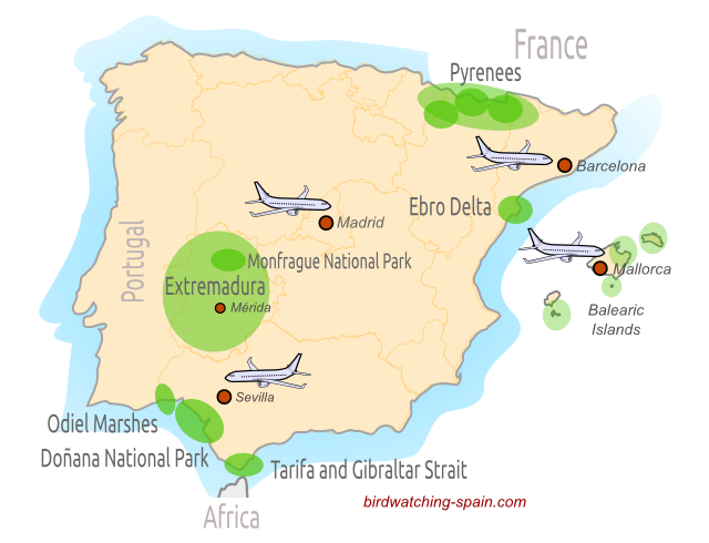 Spain And Africa Map.Bird Watching In Spain Where To Go